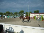 Participants of the competition in equestrian in Burgas jumping  for viewers.