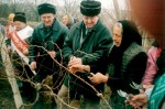 Bulgaria selebrates the day of the wine